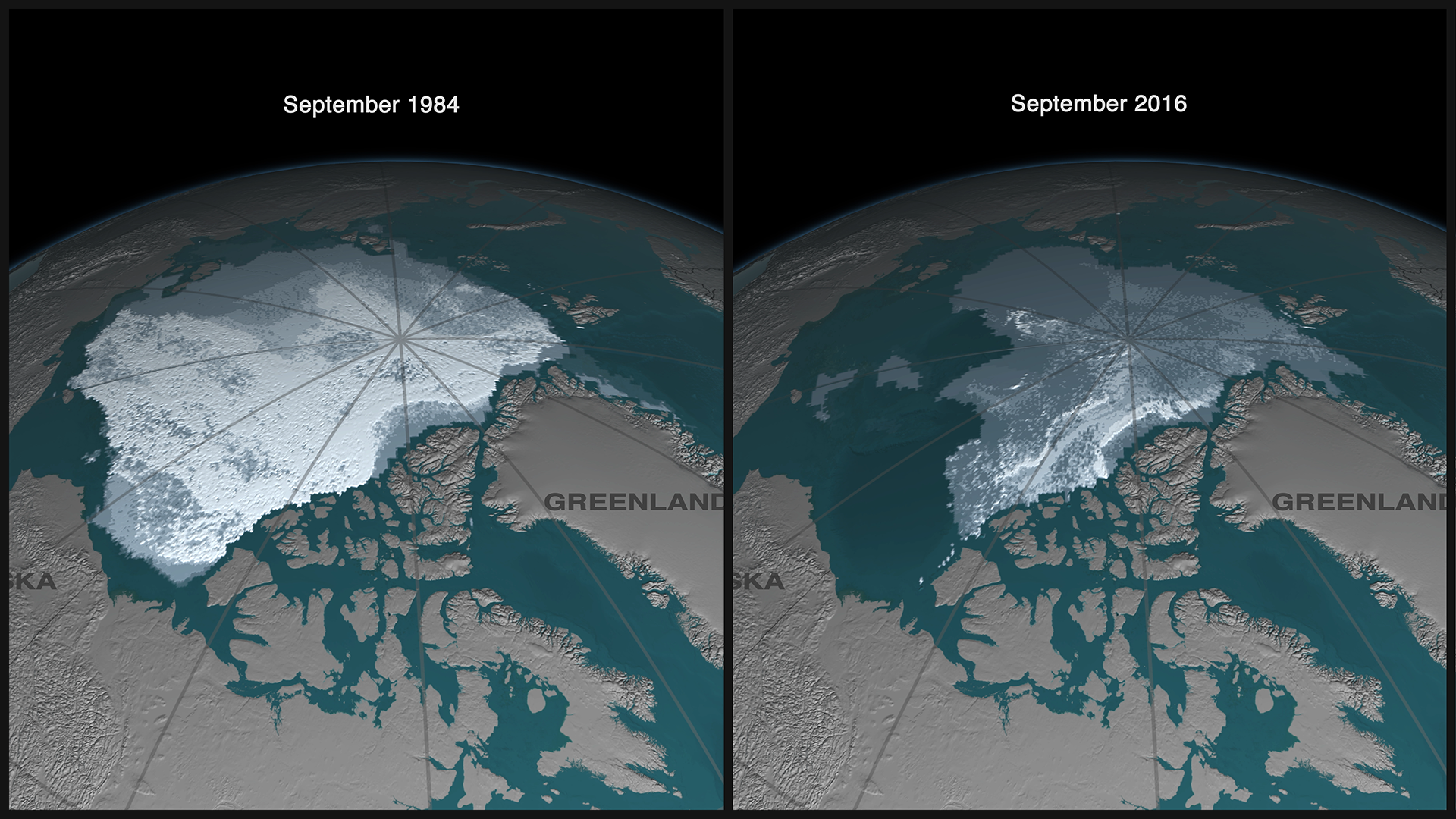 At 1984, most of the Arctic was covered in thick and old ice. Just a slice of the same type remains in 2016.