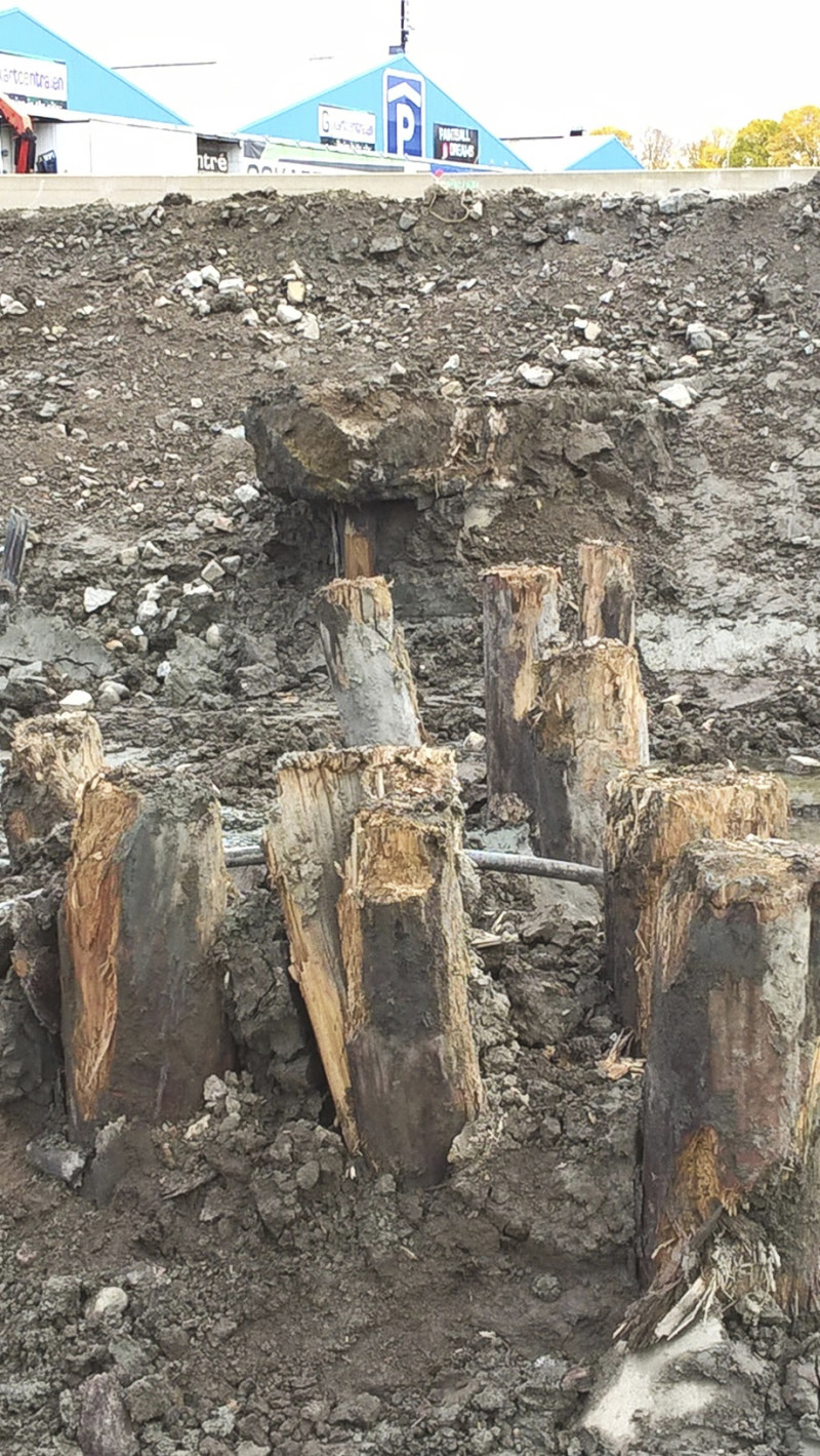 'If Gothenburg stands on such fine pilings, nobody needs to be concerned', says Charlotte Björdal about the pilings sticking up behind Gothenburg Central Station that she took samples from in November.