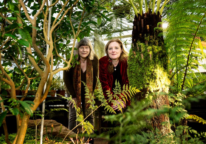 It took botanists Åslög Dahl and Bente Eriksen just over ten years to write Useful Plants from Around the World, a hobby project that has finally reached fruition.